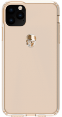 BMT Treasure Clear case for iPhone 11 PRO - Gold Skull