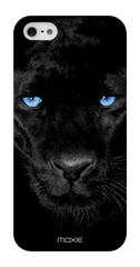 Blue Eyes Collection Panther