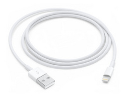 Apple Lightning Cable - 1m